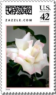 Name:  tl-White+rose.jpg Views: 185 Size:  22.8 KB