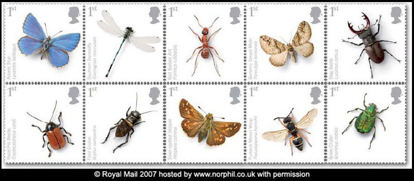 Name:  080415-insects.jpg Views: 219 Size:  68.1 KB