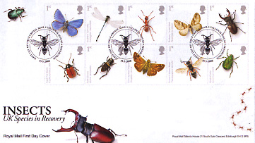 Name:  080415-insectspofdc.jpg Views: 194 Size:  40.6 KB