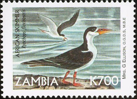 Name:  zam199928l.jpg Views: 342 Size:  41.8 KB