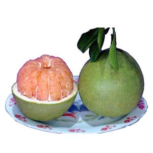 Name:  Fruit.jpg Views: 6388 Size:  29.2 KB