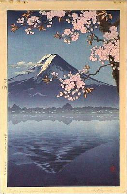 Name:  Fuji1.jpg Views: 2427 Size:  43.2 KB