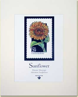 Name:  Sunflower-Poster.jpg