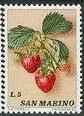 Name:  fruit_san_mario_1973.jpg Views: 226 Size:  8.3 KB