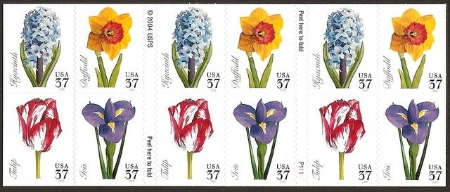 Name:  Springflowers.jpg Views: 297 Size:  119.1 KB