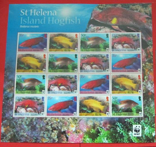 Name:  74- WWF 2011 ST HELENA - 400K.jpg Views: 352 Size:  57.3 KB