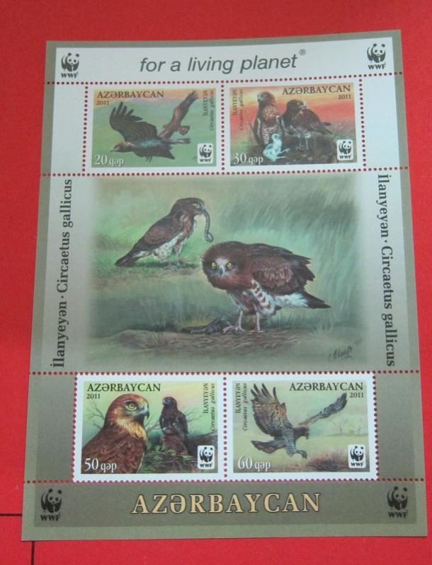 Name:  79- WWF 2011 AZERBAIJAN - 92K.jpg Views: 341 Size:  66.0 KB