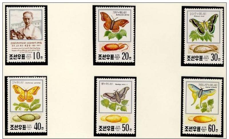 Name:  105 -KOREA NORTH 1991 BUTTERFLIES MNH- 77k.jpg Views: 329 Size:  66.9 KB