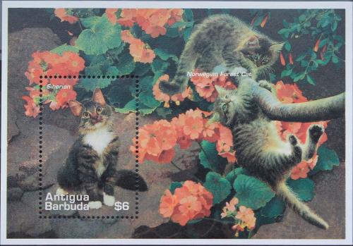 Name:  463-cats antigua barbuda 1995-55k.jpg Views: 188 Size:  95.7 KB