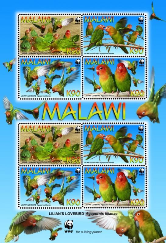 Name:  malawi1.jpg Views: 743 Size:  97.4 KB