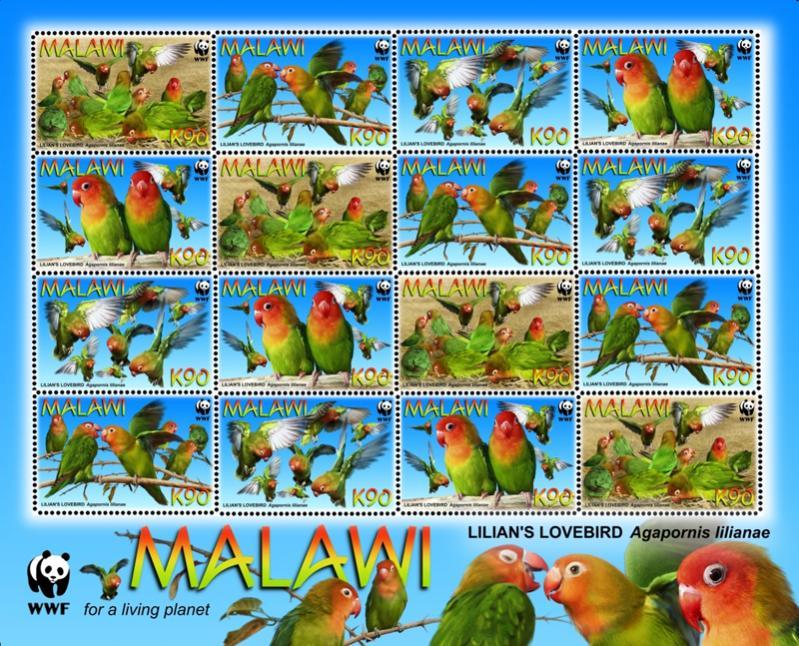 Name:  malawi2.jpg Views: 417 Size:  134.9 KB