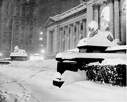 Name:  250px-New_york_public_library_1948.jpg Views: 166 Size:  12.6 KB