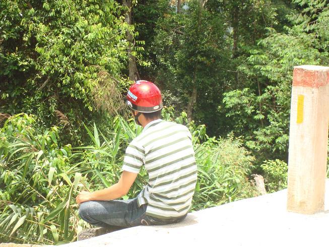 Name:  Cong Cong buon.jpg Views: 171 Size:  118.0 KB