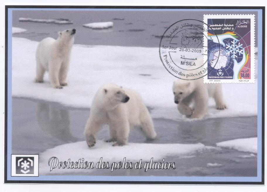 Name:  1cm polar orse.jpg Views: 316 Size:  75.7 KB