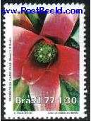 Name:  orchid (2).JPG Views: 438 Size:  8.2 KB