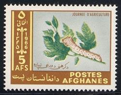 Name:  afghanistan_08_731_silkworm.jpg Views: 4440 Size:  15.5 KB