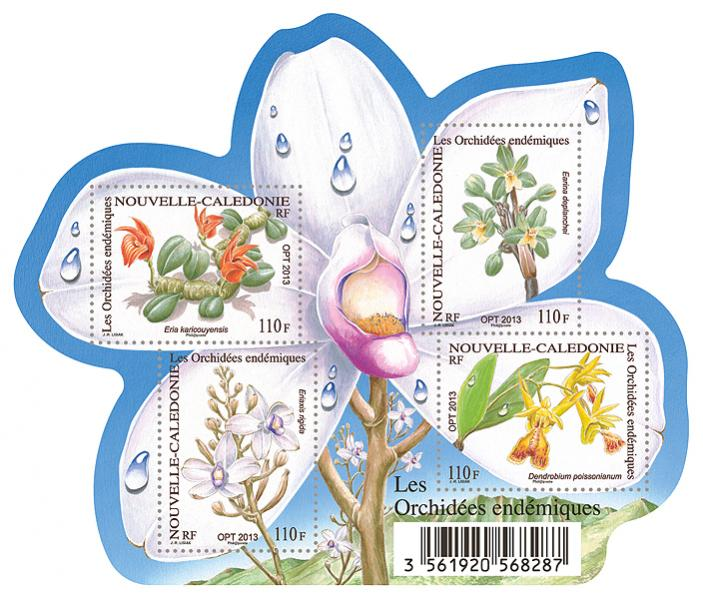 Name:  nc_bl_orchidees_grande.jpg Views: 245 Size:  76.9 KB