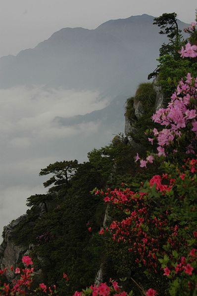 Name:  398px-Lu_Shan-Jiangxi5_by_KongFu_Wang.jpg Views: 1262 Size:  38.9 KB
