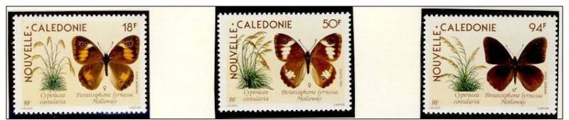 Name:  18- NEW CALEDONIA 1990 BUTTERFLIES MNH - 80k.jpg Views: 399 Size:  30.2 KB