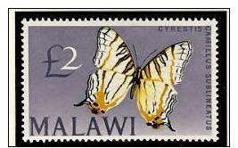 Name:  94- MALAWI 1964 £2 BUTTERFLY LH MINT- 190k.jpg Views: 338 Size:  43.6 KB