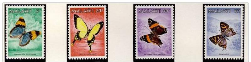 Name:  95- MALAWI 1984 BUTTERFLIES MNH- 140k.jpg Views: 336 Size:  33.4 KB