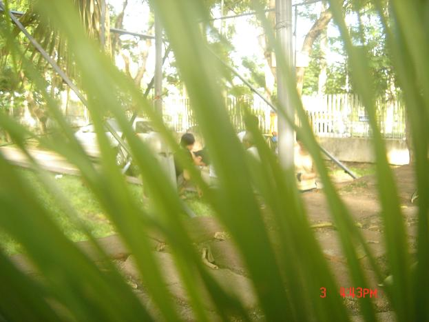 Name:  Picture 081.jpg Views: 284 Size:  38.2 KB