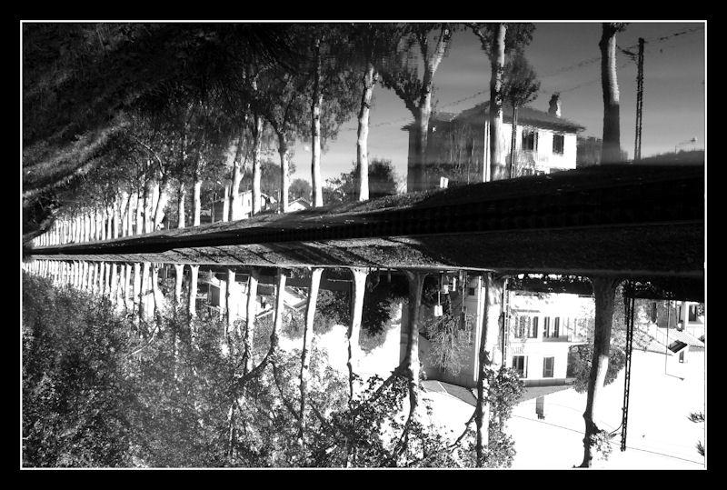 Name:  Canal du Midi (4).jpg Views: 752 Size:  127.1 KB