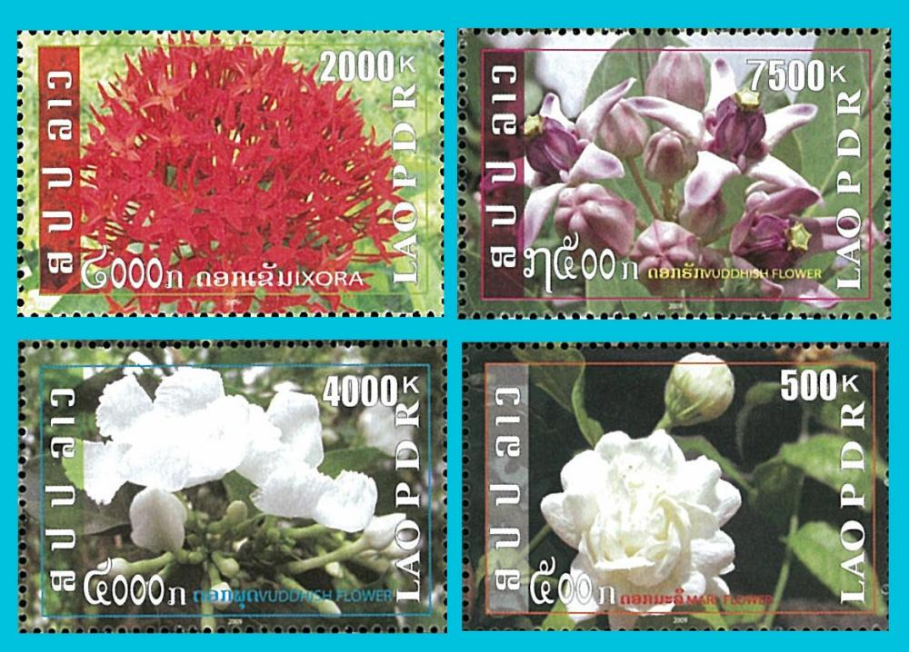 Name:  flowers_st.jpg Views: 290 Size:  137.9 KB
