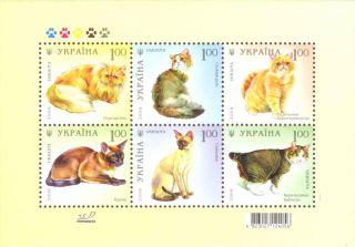 Name:  16-05-08-cat1.jpg Views: 339 Size:  14.1 KB
