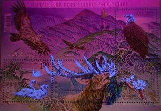 Name:  18-06-08-02.jpg Views: 582 Size:  19.3 KB