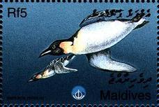 Name:  maldiv1998.jpg Views: 387 Size:  10.2 KB