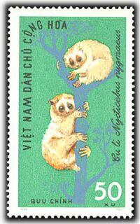 Name:  culinho vndcch thurung 1965.jpg Views: 1483 Size:  17.8 KB
