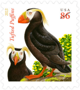 Name:  13-Tufted-Puffins.jpg Views: 300 Size:  23.5 KB