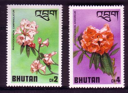 Name:  Bhutan.jpg Views: 636 Size:  195.3 KB