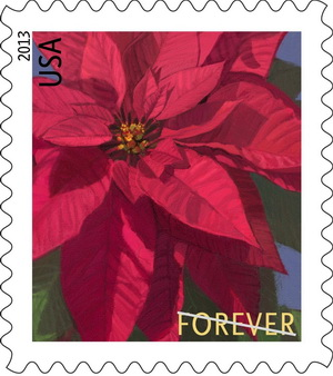Name:  13-poinsettia.jpg