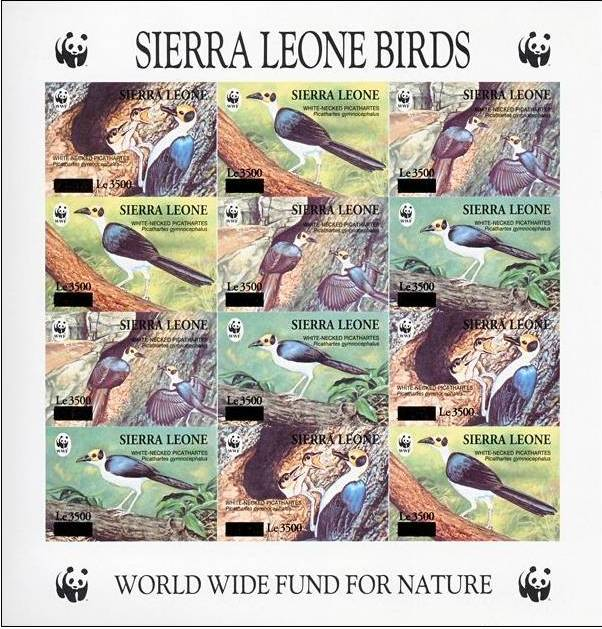 Name:  SierraLeone.jpg