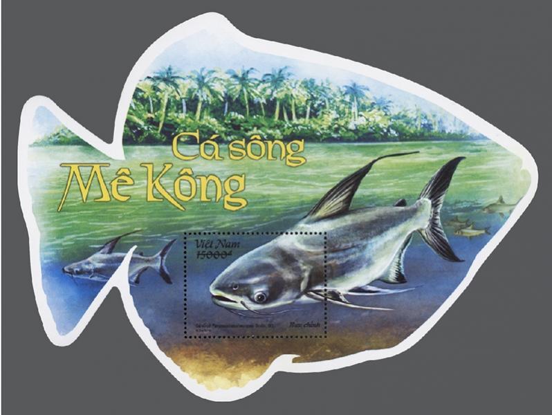 Name:  Ca song MEKONG-01 - Block.jpg Views: 173 Size:  60.5 KB