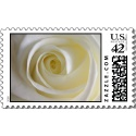 Name:  creamy_white_rose_postage-p172498149025793195l_125.jpg Views: 240 Size:  7.1 KB