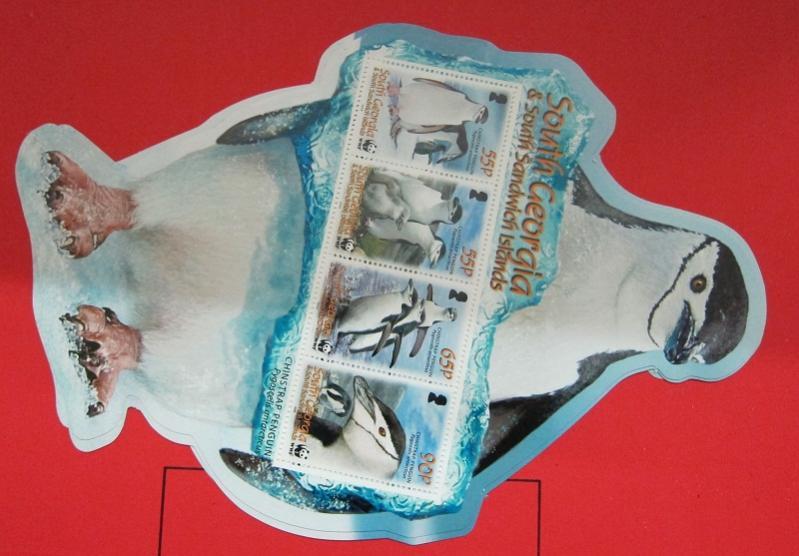 Name:  360- WWF 2008 SOUTH GEORGIA -105K.jpg Views: 129 Size:  58.9 KB
