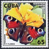 Name:  bướm.jpg Views: 4562 Size:  14.1 KB