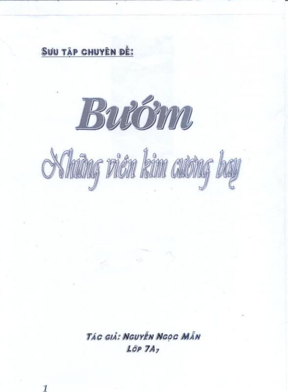 Name:  bô buom.jpg Views: 337 Size:  25.7 KB