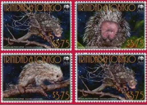 Name:  trinidad.jpg Views: 327 Size:  42.7 KB
