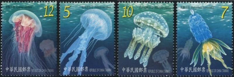 Name:  jellyfish-l1.jpg1.jpg Views: 357 Size:  42.8 KB