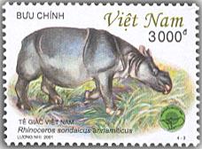 Name:  tê giác -  dongvatVQGCTien 2001.jpg Views: 1069 Size:  25.6 KB
