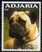 Name:  bmadjaria.jpg Views: 2005 Size:  14.2 KB