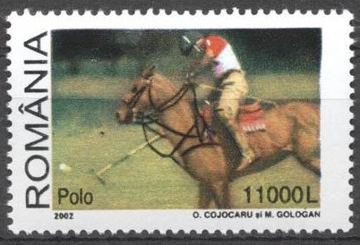 Name:  polo (1).jpg