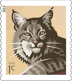 Name:  13-Bobcat.jpg Views: 224 Size:  37.3 KB