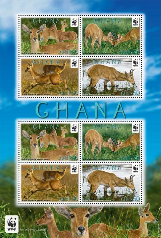 Name:  ghana.jpg Views: 283 Size:  438.3 KB