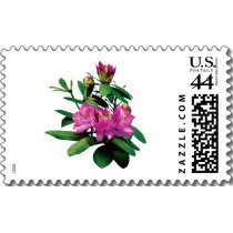 Name:  magenta_rhododendronswith_buds_postage-p172187142556046118anrd1_210.jpg Views: 1608 Size:  12.5 KB