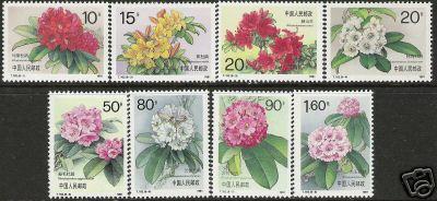 Name:  China - 1991 Azalea.jpg Views: 1370 Size:  26.2 KB